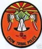 Crow_Tribal_2_MTP.JPG