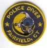 Fairfield_Diver_CT.jpg