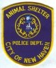 New_Haven_Animal_Shelter_CTP.jpg